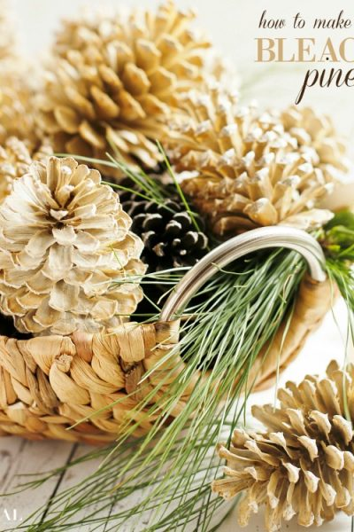 how-to-make-beautifully-bleached-pinecones