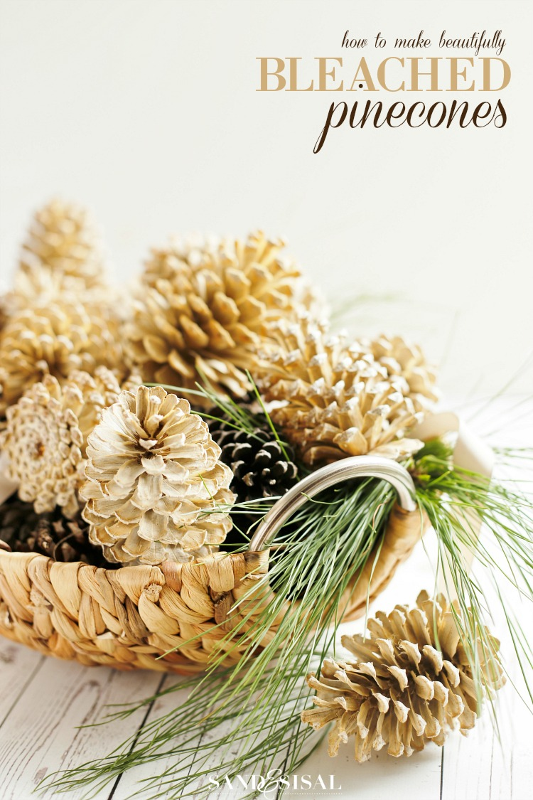 Learn how easy it is to make beautifully bleached pinecones for decorating and crafts.