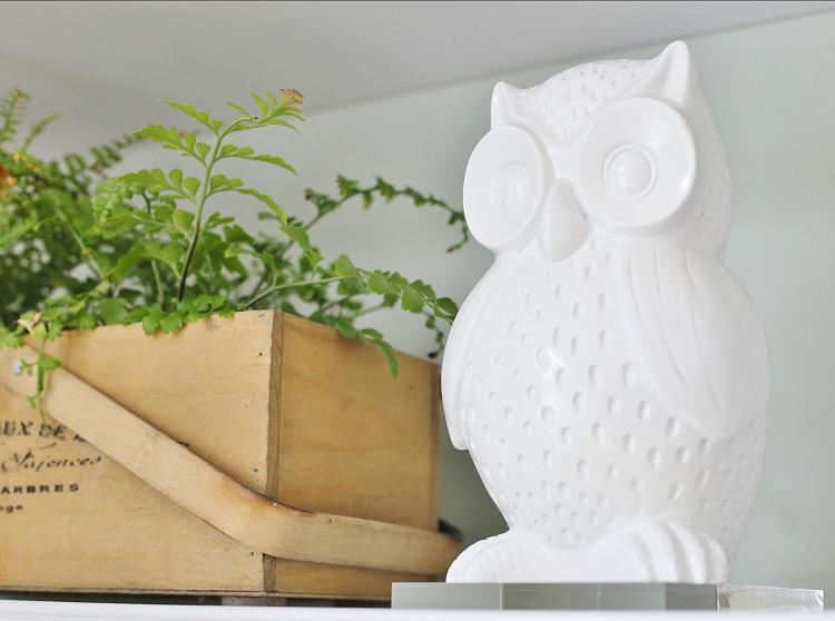 White Owl - Fall Decor