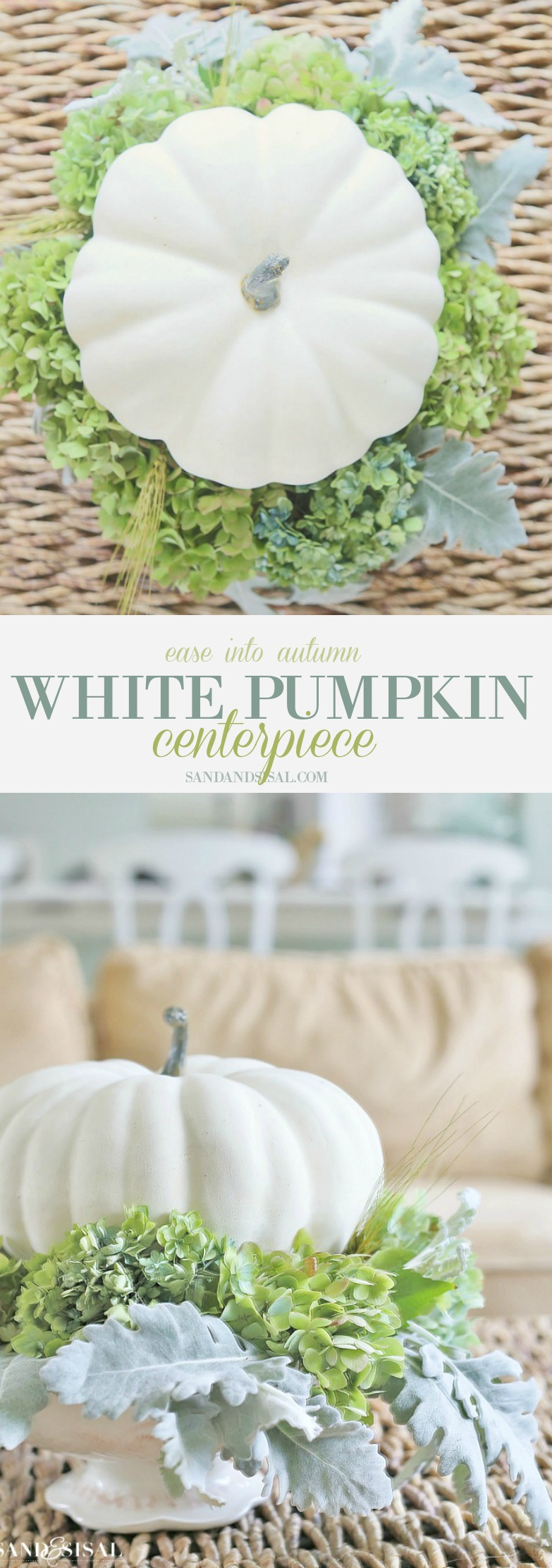 Ease into Autumn with a beautiful and easy to make White Pumpkin Centerpiece
