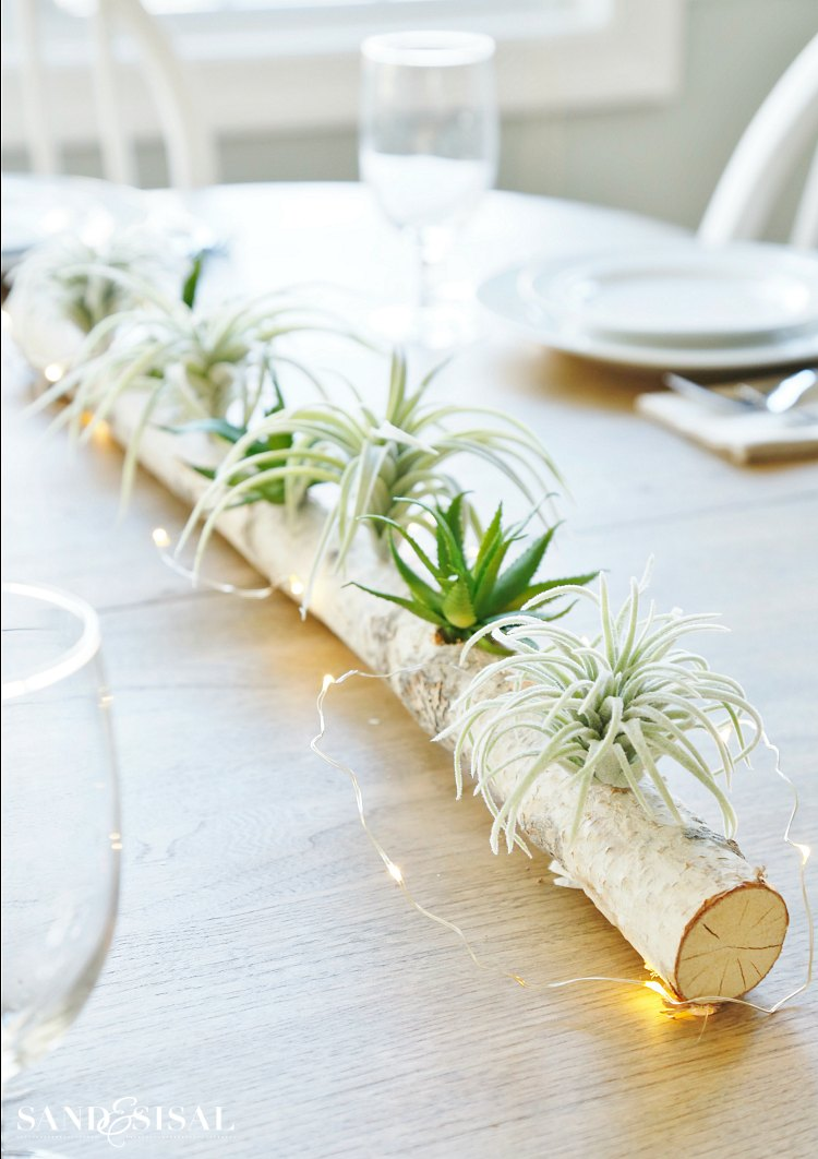 birch-log-centerpiece-with airplants