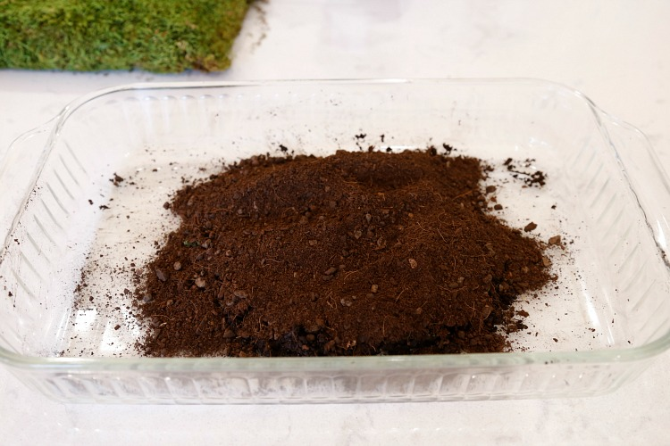 bonsai-soil-diy-kokedama