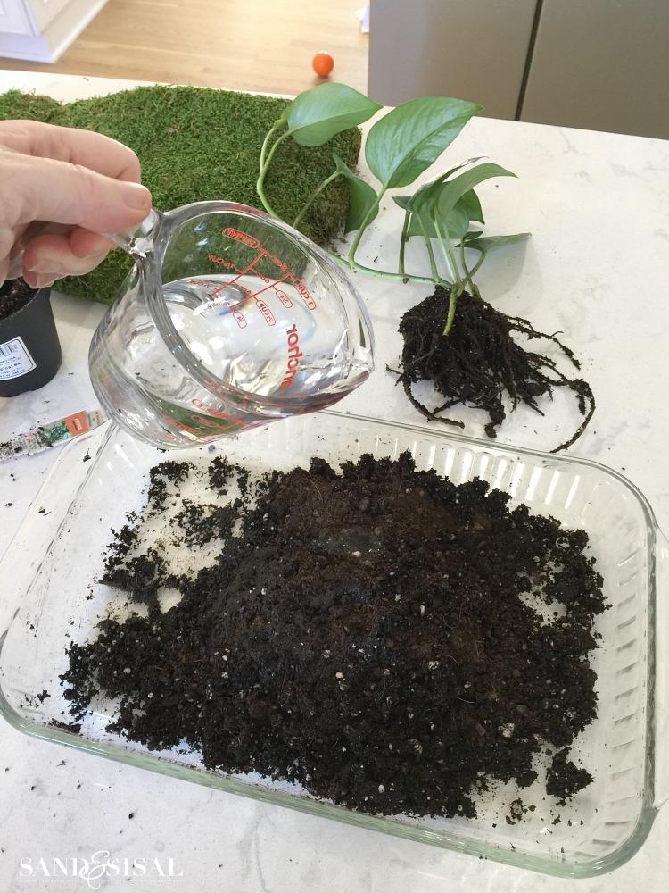 mixing-soil-for-kokedama