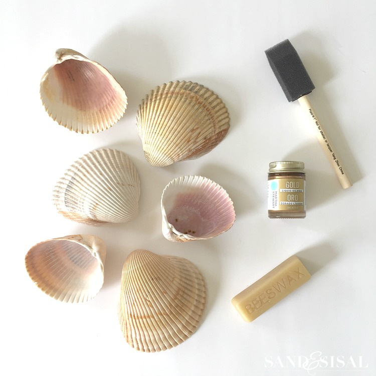 DIY Shell Salt Cellars