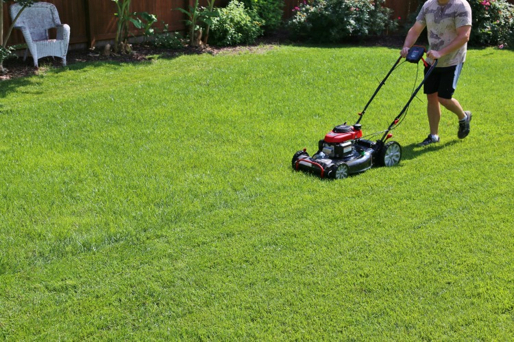 mowing-lawns