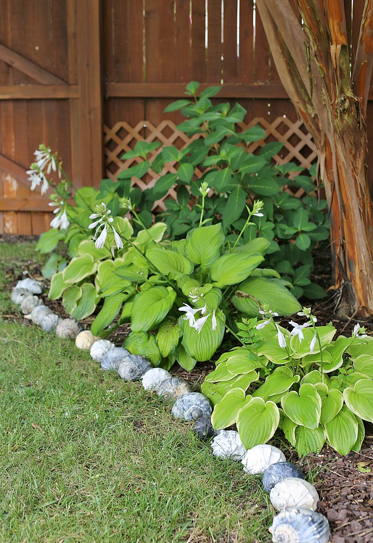 Sea Shell Garden Edging