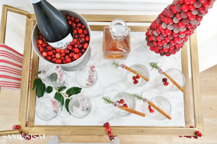 Cranberry Cocktail Party