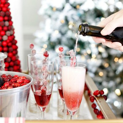 Cranberry Sprintzers - Cranberry Cocktail Party Ideas