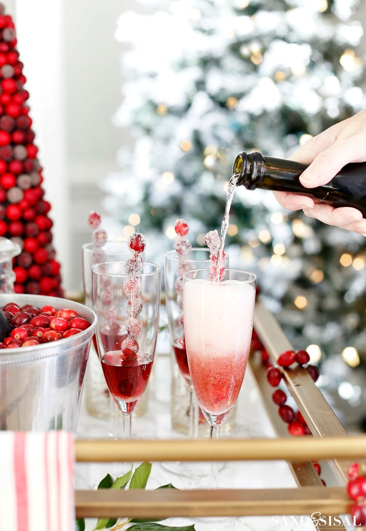 Sugared Cranberry Sprintzers - Cranberry Cocktail Party Ideas