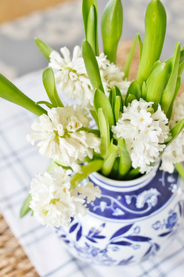 white hyacinth in ginger jar