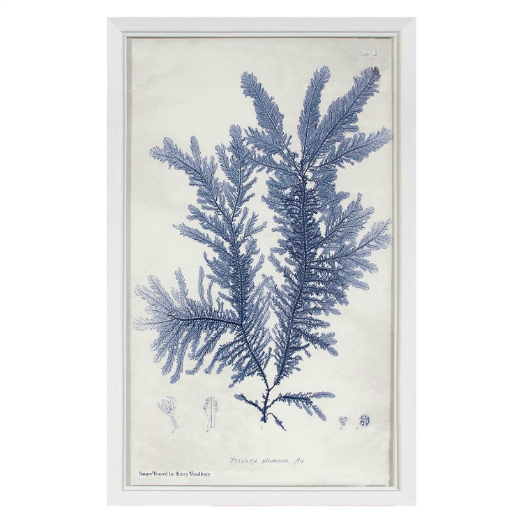Threshold Blue Kelp Print