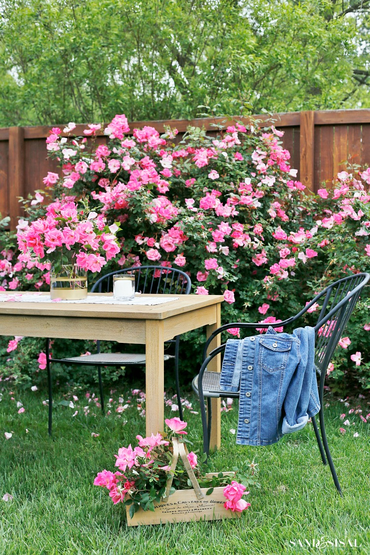 Outdoor Dining - Pink Roses